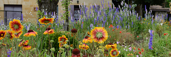 Chateau La Fleur Morange